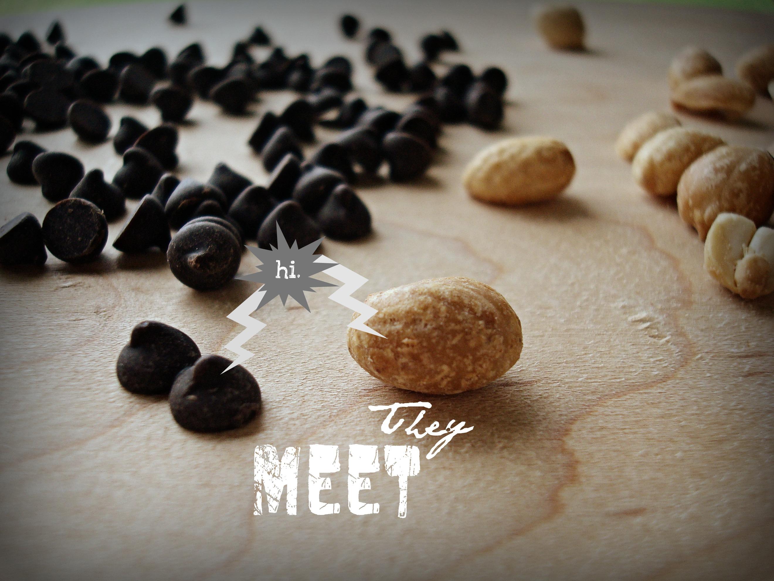 Vegan Mr. Goodbars - Fork & Beans