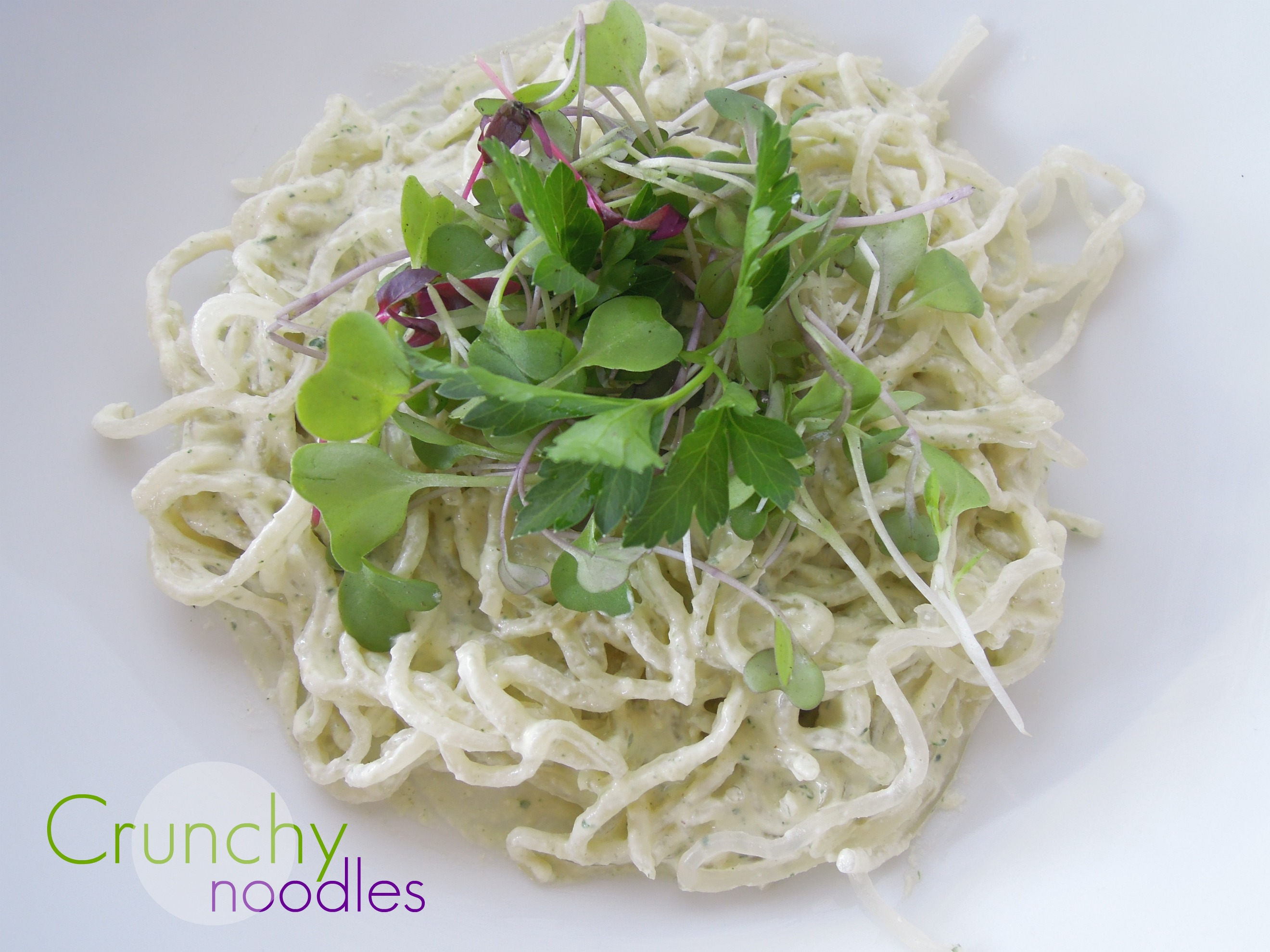 Raw Cheezy Noodles - Fork & Beans