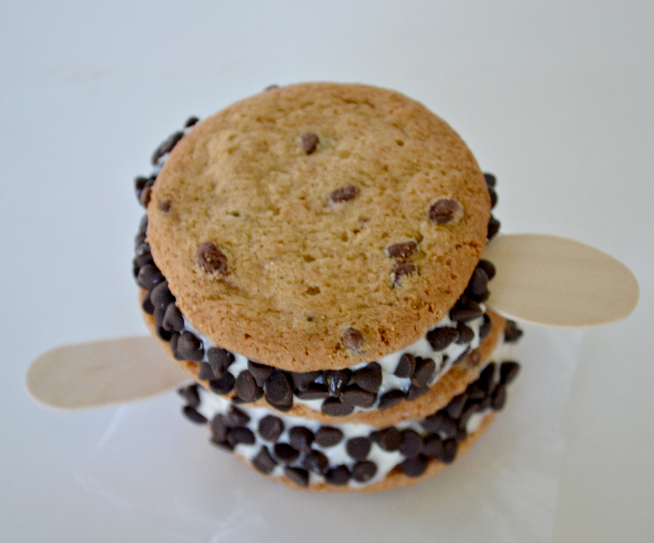 No bake, easy to assemble gluten free Chipwiches made with Enjoy Life cookies.