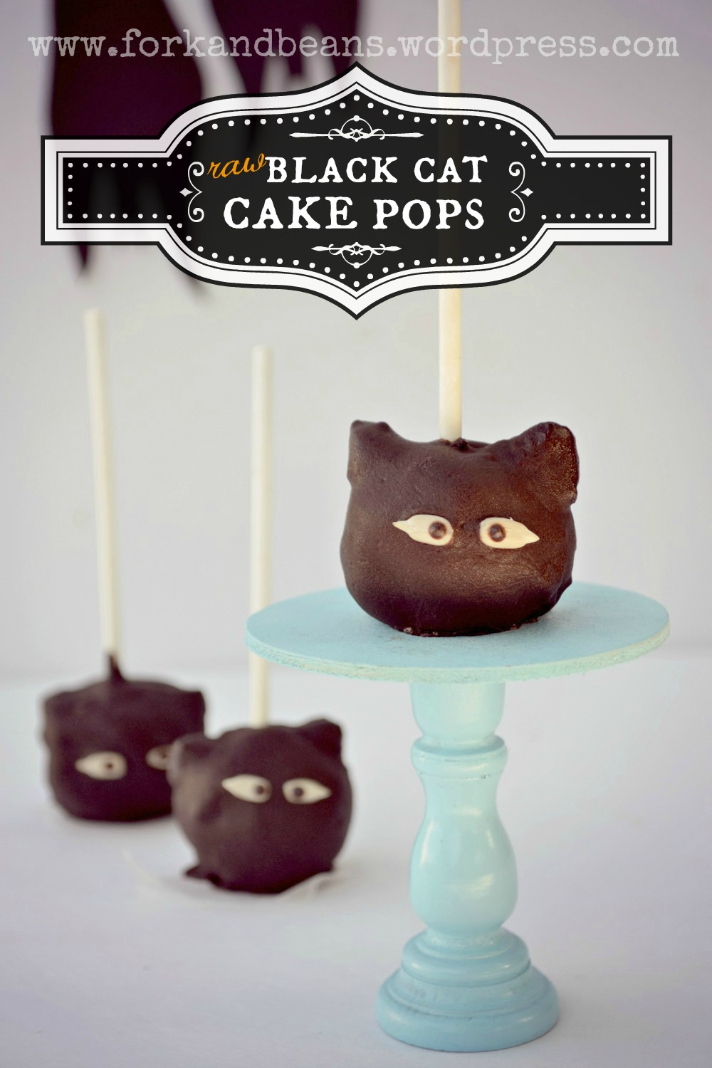 Raw Chocolate Cake Pops - Fork & Beans