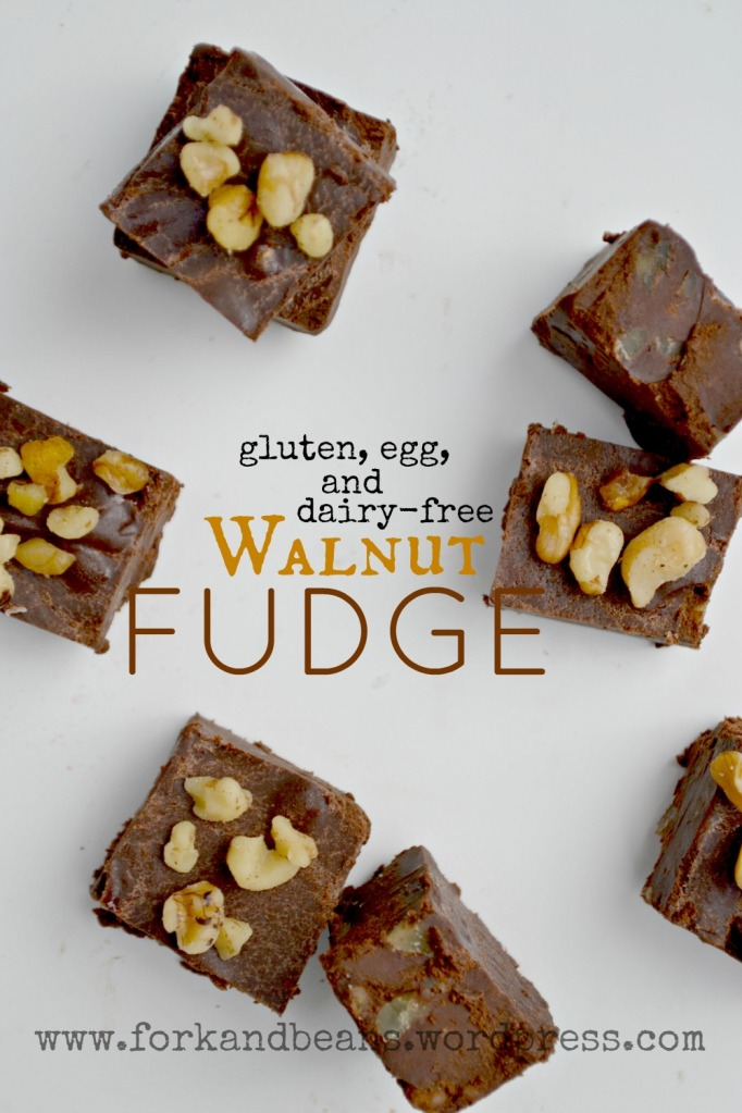 Vegan Fudge - Fork & Beans